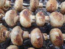 marinated champinjoner Arkivbild