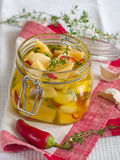 Marinated cheese Royalty Free Stock Photography