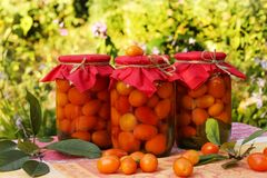 Marinated cherry tomatoes in jars on a table in the garden. Some of the tomatoes are scattered on the table Stock Image