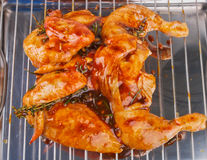 Marinated Chicken Royalty Free Stock Images
