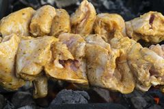 Marinated chicken kebab is cooked on the grill on the coals. stock photography