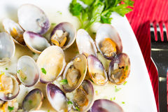 Marinated clams Stock Photography
