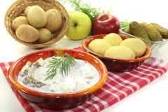 Marinated Cream herring with apple Royalty Free Stock Photos
