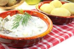 Marinated Cream herring with cucumber Stock Photos
