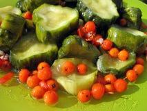Marinated cucumbers and rowan berries stock image