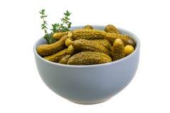 Marinated cucumbers royalty free stock image