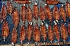 Marinated fish drying Royalty Free Stock Photos