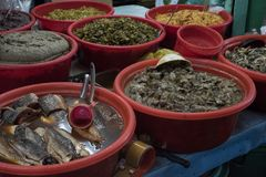 Marinated fish are presented in large plastic bowls at Binh Tay market in Ho Chi Minh City. Marinated fish are presented in large plastic bowls at Binh Tay royalty free stock photography