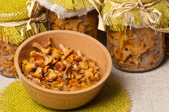 Marinated golden chanterelles Royalty Free Stock Image