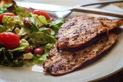 Garden Salad Grilled Salmon. Marinated grilled salmon fillet with fresh garden salad stock images