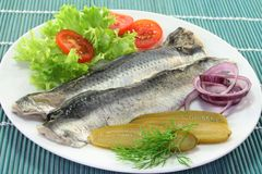 Marinated herring Royalty Free Stock Image