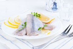 Marinated herring fillet on a white plate with lemon and onion. Served table and the traditional spring delicacy of the. Netherlands. Typical cooking fish in stock photo