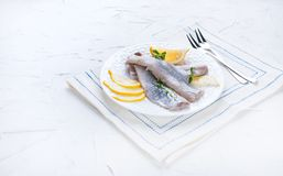 Marinated herring fillet on a white plate with lemon and onion. Traditional spring delicacy of the Netherlands. Typical cooking. Fish in Holland. Free space for royalty free stock images