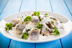 Marinated herring fillets Stock Photos