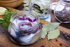 Marinated herring in a jar Stock Image