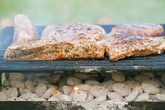Marinated juicy pork ribs on grill Royalty Free Stock Photo