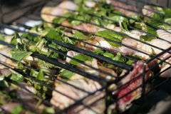 Marinated Meat with herbs for grill Royalty Free Stock Photos