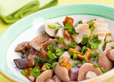 Marinated mushroom mix Stock Image