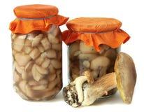 Marinated mushrooms. Jar with Marinovanymi mushrooms on a white background stock photo