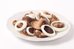 Marinated mushrooms Stock Image