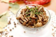 Marinated mushrooms Stock Photos
