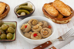 Marinated mushrooms, cucumbers and olives Stock Photography
