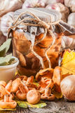 Marinated mushrooms. Royalty Free Stock Images