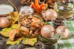 Marinated mushrooms. Royalty Free Stock Image