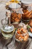 Marinated mushrooms. Stock Images