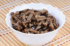 Marinated mushrooms - honey fungus Stock Images