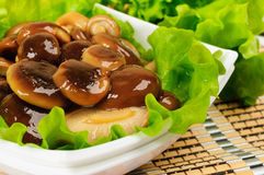 Marinated mushrooms with lettuce. Marinated mushrooms with lettuce leaves Royalty Free Stock Images
