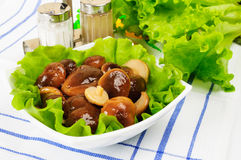 Marinated mushrooms with lettuce leaves. On a white background Stock Images