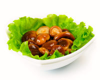 Marinated mushrooms with lettuce leaves. On a white background Royalty Free Stock Photo