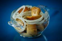 Marinated mushrooms Stock Images