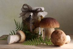 Marinated mushrooms Royalty Free Stock Photos