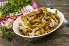 Marinated mushrooms Royalty Free Stock Photography