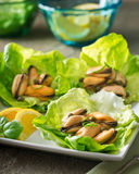 Marinated Mussels with Capers. Delicious marinated mussels with capers, lemon, and basil on lettuce wraps Stock Photos