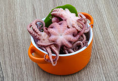 Marinated octopus Royalty Free Stock Images