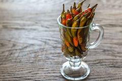 Marinated peppers in the glass Royalty Free Stock Photography