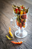 Marinated peppers in the glass Royalty Free Stock Image