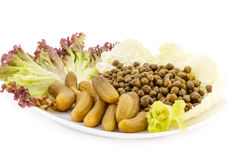 Marinated pickled cucumbers, capers and lettuce on plate Stock Image
