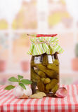 Marinated pickles Royalty Free Stock Photography