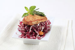 Marinated pork and red cabbage. Marinated pork and fresh red cabbage salad stock image