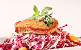 Marinated pork and red cabbage Royalty Free Stock Image