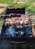 Marinated pork shashlik preparing on a barbecue grill over charc Stock Photography