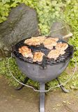 Marinated pork steaks on the grill Royalty Free Stock Photos