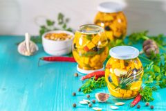 Marinated preserving jars. Fermented food stock photo