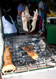 Marinated, roasted Cuy. (Guinea Pig), a local delicacy, on a barbecue at the outdoor food market in Banios, Ecuador royalty free stock photos