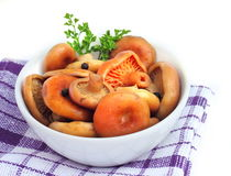 Marinated saffron milk cap mushrooms Stock Photo