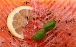 Marinated salmon fillet on grill, soft focus Royalty Free Stock Images